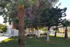 rent Larnaca